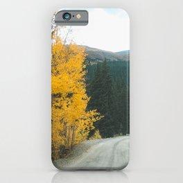 Yellow Leaf Road - Colorado Aspen iPhone Case