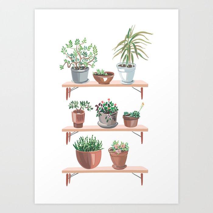flowerpots on the shelves Art Print