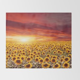 Field of blooming sunflowers on a background sunset Throw Blanket