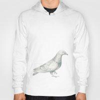 pigeon Hoodies featuring Pigeon by Bonnie Durham