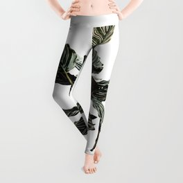 Calathea Planter Leggings