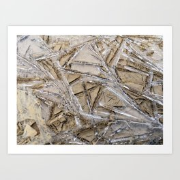 Shattered Perspective Art Print