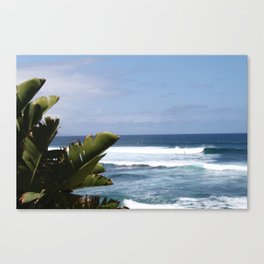 Ho'okipa Beach Canvas Print