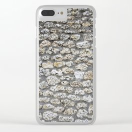 sea stone Clear iPhone Case