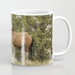 Stallion Relaxing on So Steens Mountain Coffee Mug