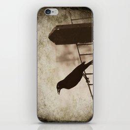 Blackbird 1 iPhone Skin