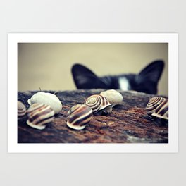 Cat Snails Art Print