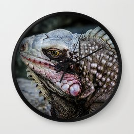 Portrait of an Iguana Wall Clock