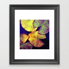 lily pads IIX Framed Art Print