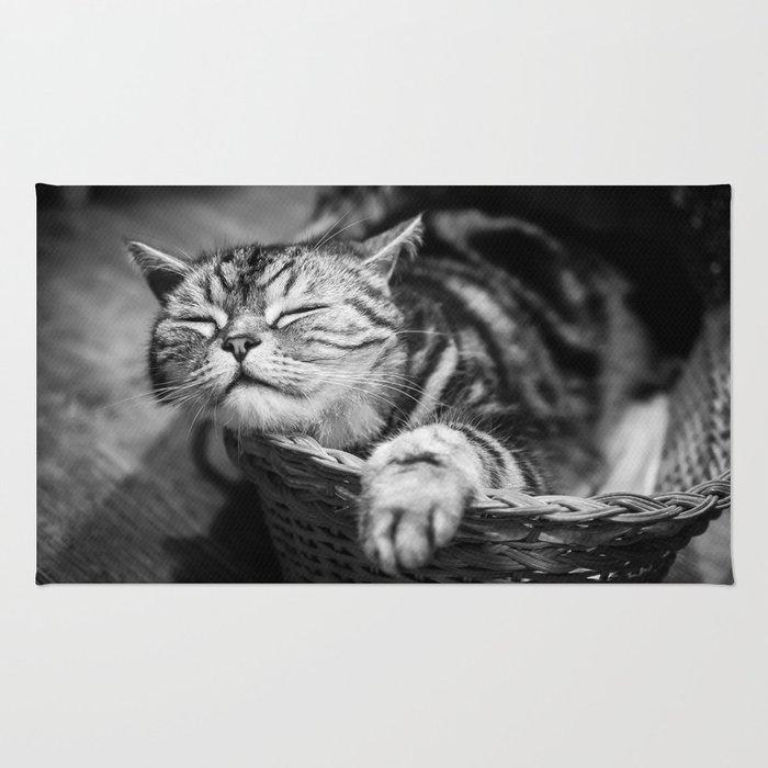 sleepy cat Rug