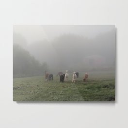 Grazing Girls Metal Print