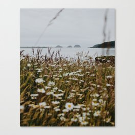 Coastal Flowers Canvas Print