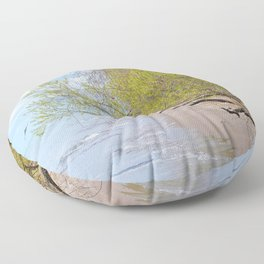 Land Sea and Sky Floor Pillow