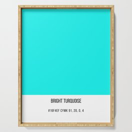 Bright Turquoise Serving Tray