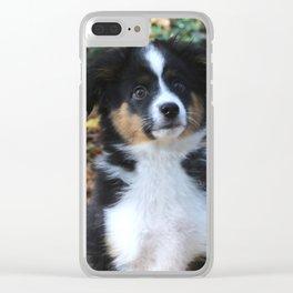 Australian Shepherd Puppy Clear iPhone Case