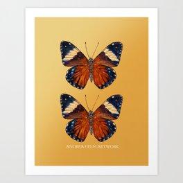 Hamadryas Amphinome Butterfly - Dark Orange, Deep Blue Black & Mellow Yellow Art Print