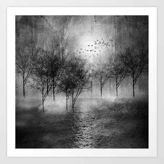Black and White - Paisaje y color II Art Print