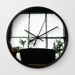 Plants in the Pantry Window Wall Clock