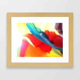 Colorful Feathers Framed Art Print