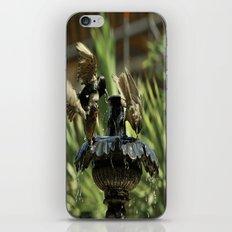 Rowdy Bird Bath iPhone & iPod Skin
