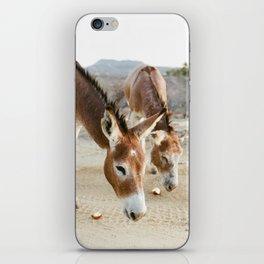 Two Donkeys Eating Apples iPhone Skin
