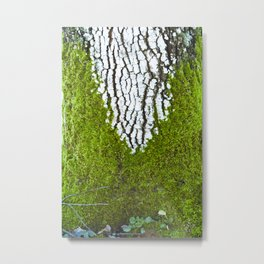 Nature - tree-decoration-Photography-Nature Photography Metal Print