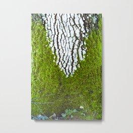 Nature - tree-decoration-Photography-Nature Photography Metal Print