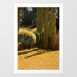 Palo Brea Blossoms and Cactus Garden Art Print