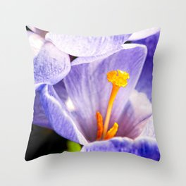 Violet Color Crocus Flower Yellow Stigma And Stamens Throw Pillow