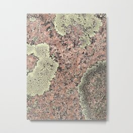 Moss and Stone Metal Print