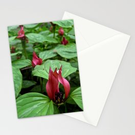 'Trillium' Stationery Cards