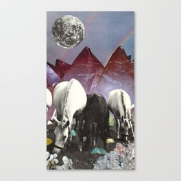 Foraging Canvas Print
