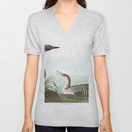 Black throated diver, Birds of America, Audubon Plate 346 Unisex V-Neck