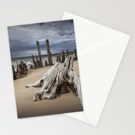 Tree Stump and Pilings on the Beach at Kirk Park by Grand Haven Michigan Stationery Cards