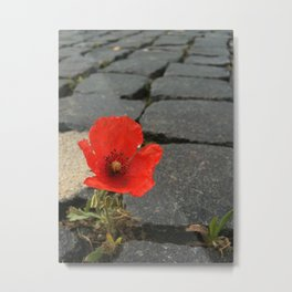 The Poppy in the Cobbles Metal Print