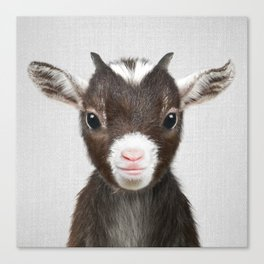 Baby Goat - Colorful Canvas Print