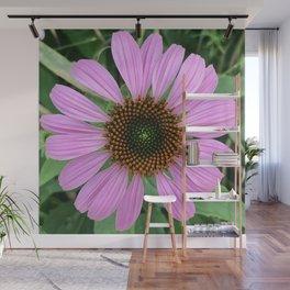 In Bloom 2019 - Cone Flower 2 Wall Mural