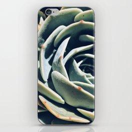 Dry garden 1 iPhone Skin