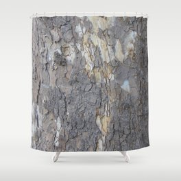 brown sycamore bark Shower Curtain