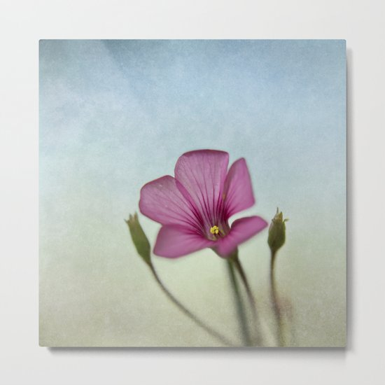 Happy lil Flower Metal Print