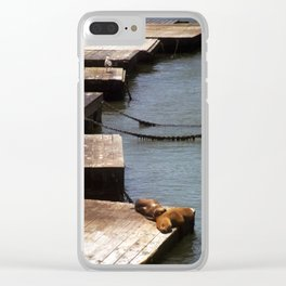 Sunbathing Seals Clear iPhone Case