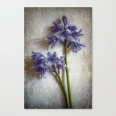 Bluebell Delight Canvas Print