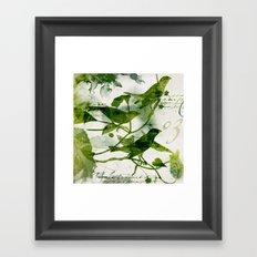Birds (square 3) Framed Art Print