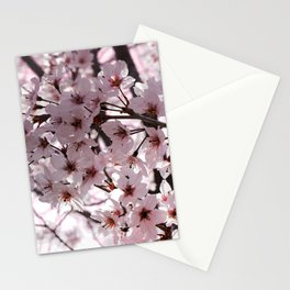 Sakura in Kyoto Stationery Cards