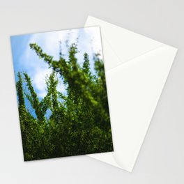 crisp Stationery Cards