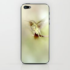 Settle iPhone & iPod Skin