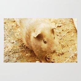 Vintage Animals - Guinea Pig Rug