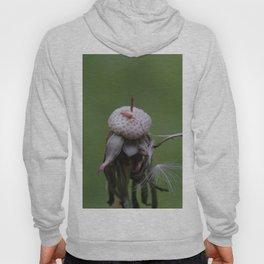 Resistance - Dandelion on green blurry background Hoody