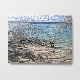 Seascape 1, Canegarden, St. Croix, USVI Metal Print