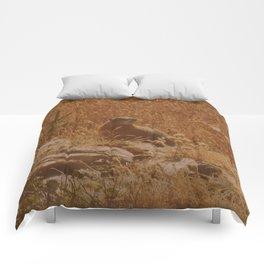 King of the Rock Comforters
